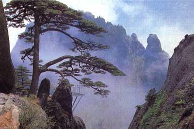 """黄山:""""三奇四绝""""名冠于世 中国十大风景名胜区"""