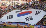 场内庞大国旗