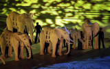 大象极具特色