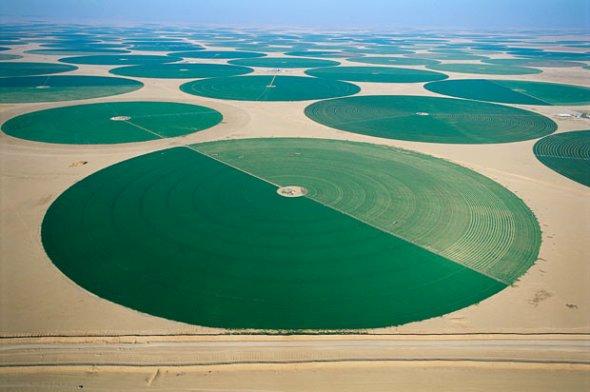 沙特圆形灌溉区