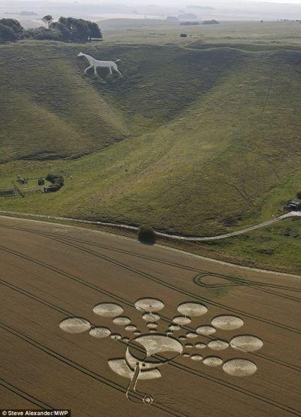 这个两周前制作的麦田怪圈旁边还有一匹远古白马怪圈,它们位于英国史前巨石阵附近