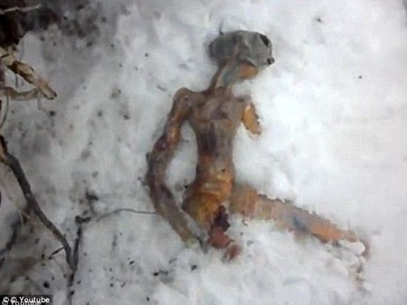 西伯利亚伊尔库次克出现的一具怪异尸体,据说由两名过路人发现。伊尔库次克素以经常发现外星人和UFO著称