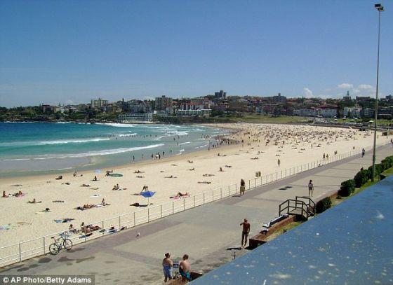 """悉尼邦迪海滩的一名居民在接受英国《每日电讯报》采访时表示:""""这种声音让听到的人陷入疯狂,很多人播放音乐,盖住这种声音,也有人使用风扇。"""""""