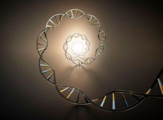 """借助于高度灵敏的新一代DNA排序技术,英国科学家对珂巴脂(琥珀的亚化石树脂前身)中的昆虫进行了研究,结果发现上世纪90年代的研究""""误诊"""",在判断古DNA的真实性时出现误判"""