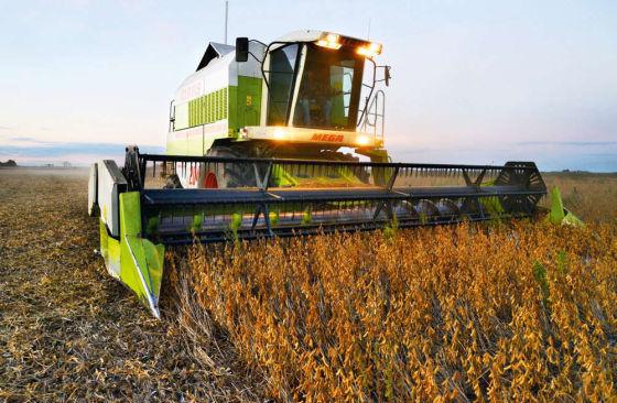 2013年5月,阿根廷布宜诺斯艾利斯省一家农场在收获季节使用收割机收割大豆。