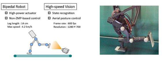 这款新型机器人采用了一台高速摄像机与一台稳定马达来达到稳定控制,从而实现身体的前倾与奔跑动作。