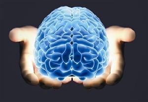 """科学家计划到2035年,破解人脑之谜,造出""""人造大脑""""。"""