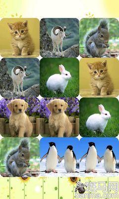 宝宝识动物    推荐理由:这款游戏分为三个主要