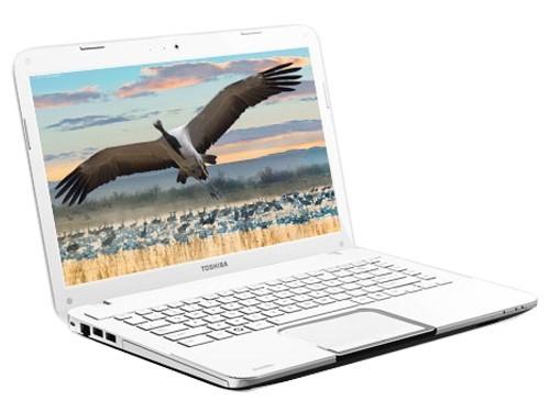 悬浮式键盘东芝L800-S06W笔记本售3999