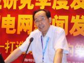 视像行业协会副会长林元芳
