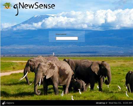 自由软件基金会发布gNewSense1.0
