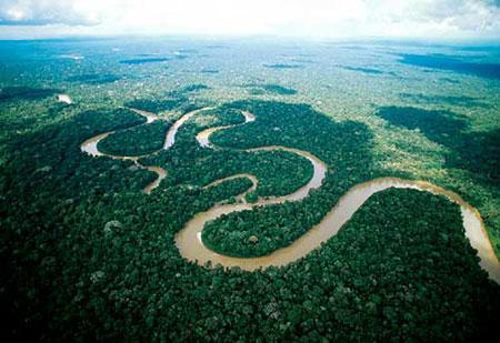 最新报告指出气候变化加速亚马逊森林破坏