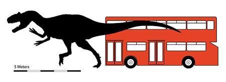 科学家发现新种鲨齿龙高度超双层巴士(图)