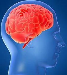 美发明可读人脑思维的仪器隐私想法无处遁形