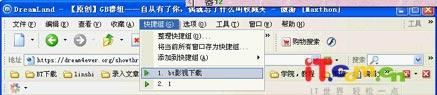 GreenBrowser与Maxthon群组功能大比拼(图)(2)