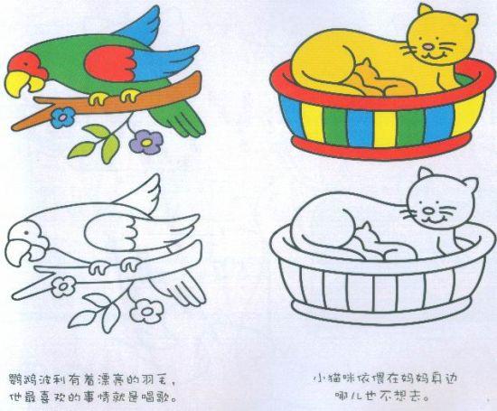 家庭早教技巧之涂色画:宝宝美感如何培养