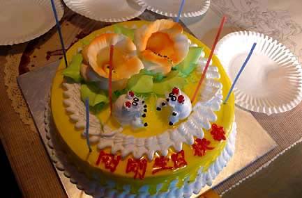 每年这一天的生日蛋糕上总是两只小老鼠