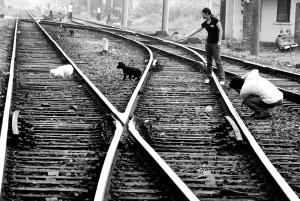 个人提高开垦有待的处女地(图)(2)情趣v个人宠物写真如何图片