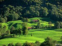 瑞士:满国尽披碧绿衣