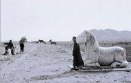 故事4:文明古国的探险