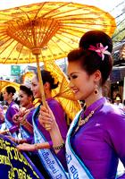 泰国美人窝里美人多