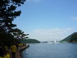 风景如画的闲山岛如此静谧