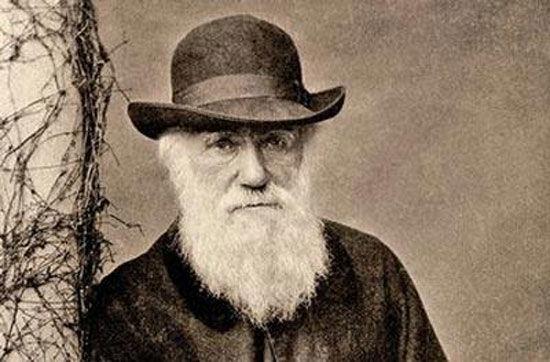 图为博物学家达尔文-达尔文在 小猎犬 上究竟是做什么的