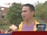 惠州遭成千上万红火蚁围村 密集恐怖见人就咬