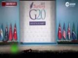 """现场:三只猫漫步G20峰会会场 获封""""猫保安"""""""