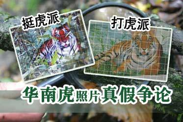 NO.118:华南虎照片疑云