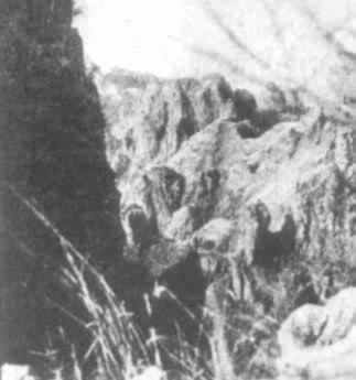 1941年9月25日,狼牙山五壮士