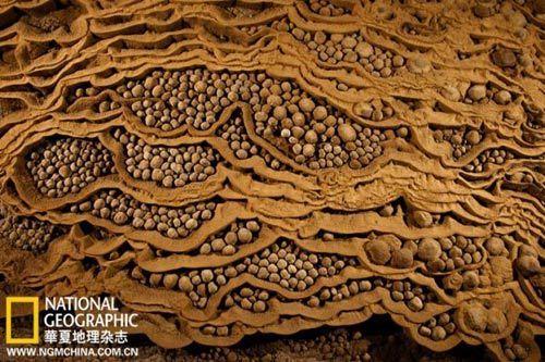 韩松洞伊旦园附近层层叠叠的干涸水塘里装满了稀有的穴珠