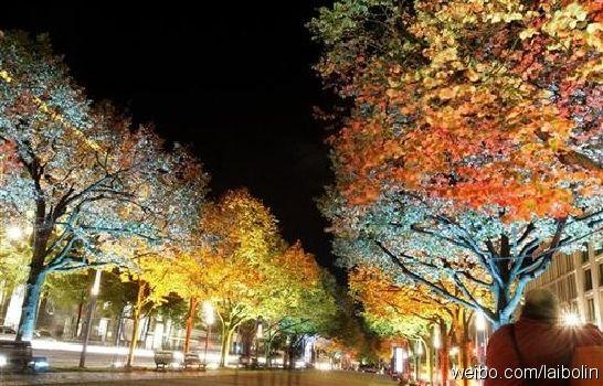 柏林菩提树下大街夜景