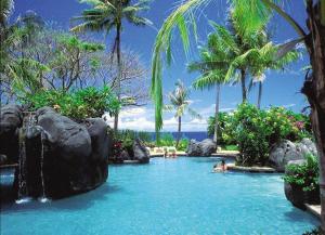 椰树、礁石环抱的泳池