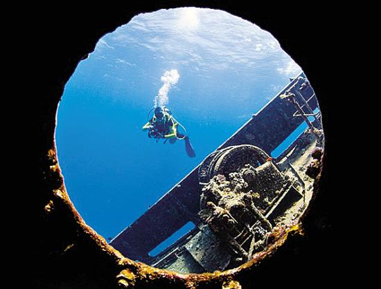 """一名潜水员透过希腊货船""""吉安尼斯 D""""号的舷窗拍照,1983年它在埃及红海阿布・努哈斯触礁搁浅。"""