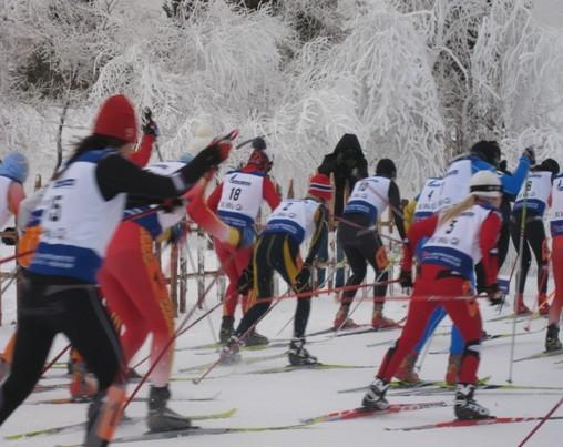 国际越野滑雪精英赛