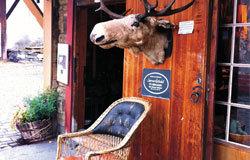 布吕根地区有卖各种纪念品的小店,这家皮具店在外头挂了一个鹿头作招牌。