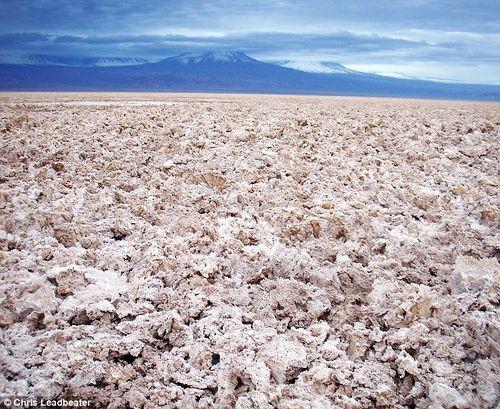 拉古纳•萨拉达盐湖的盆地上,满地都是盐块,等待被蒸发的命运。