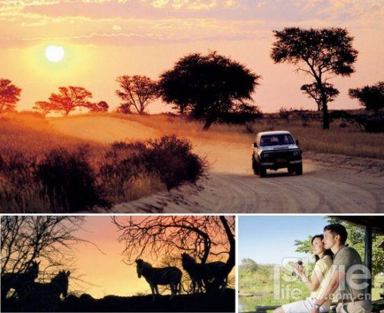 南非萨比萨比