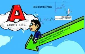 浙江世宝IPO瘦身 募资额缩水92%