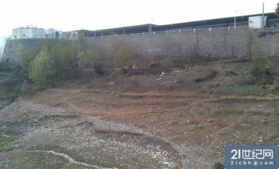 农夫山泉丹江口水源地被曝垃圾遍布水质堪忧|