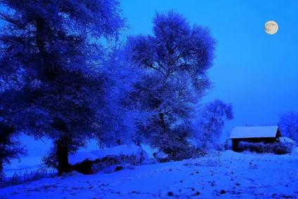 际雾凇冰雪节
