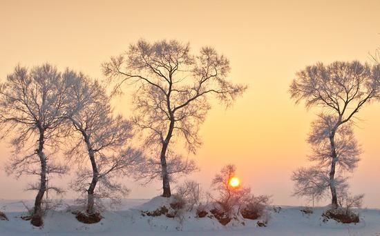 漫步林海雪原