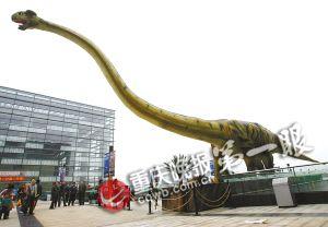 重庆是一座建在恐龙脊背上的城市