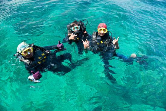 儿童 六·一 到分界洲岛免费上岛游海豚湾