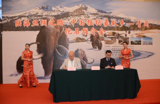 """""""陆海丝绸之路""""中国猛犸象故乡―青冈化石推介会在人民大会堂隆重举行"""