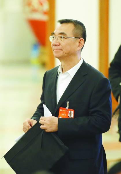 林毅丈夫参加以2014年两会 CFP供图