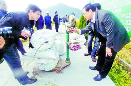 浙江富阳16位乡镇长自划责任田种地被指作秀