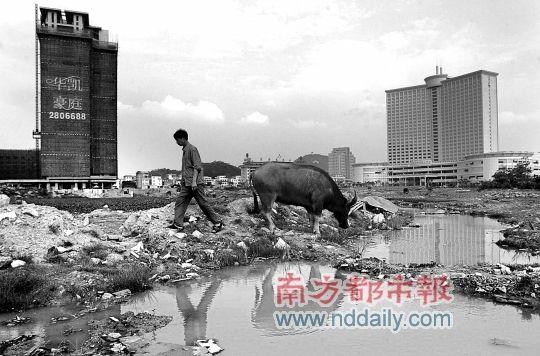 东莞重塑城市形象 市委书记刘志庚提出大讨论