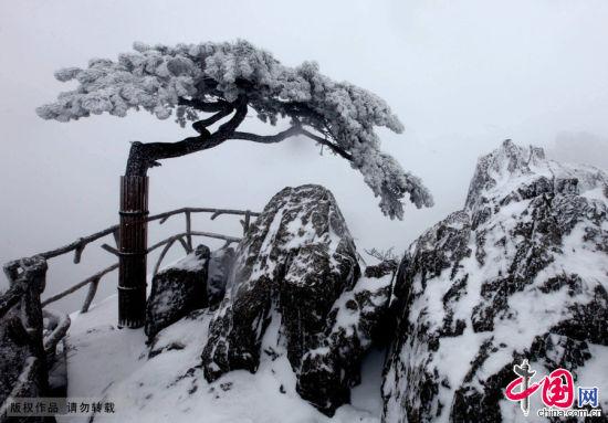 黄山风景区迎来2015年首场大雪